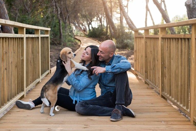 embarazo con mascotas, valencia